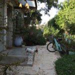 עיצוב הגינה כחלק מתכנון הבית